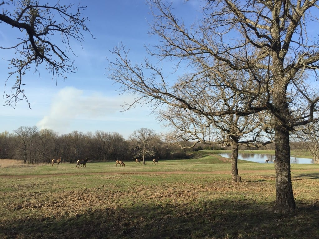 South Central Regional Sporting Clays Championship at Side X Side Ranch