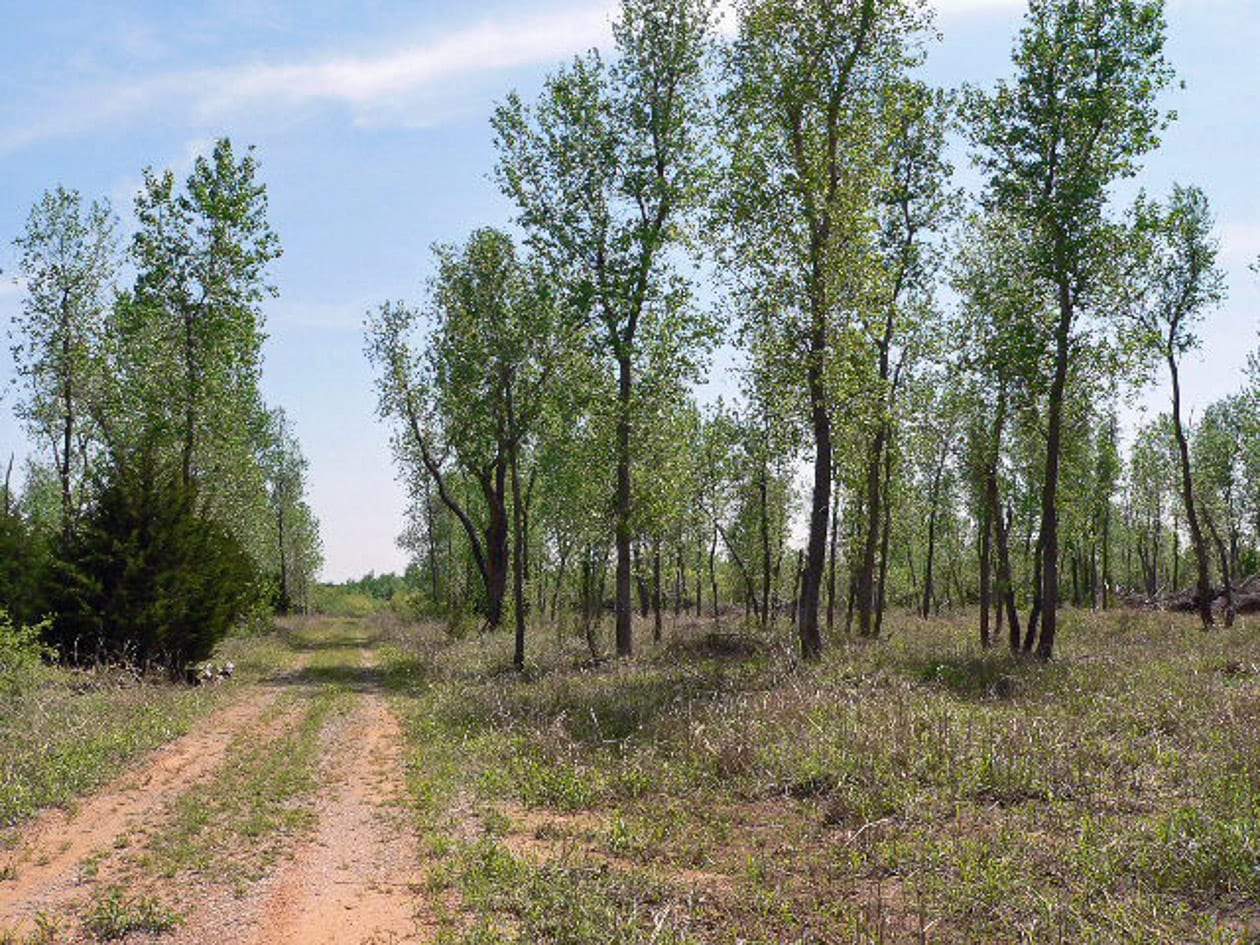 SPORTSMAN'S PARADISE-710 Acres-Canadian County OK