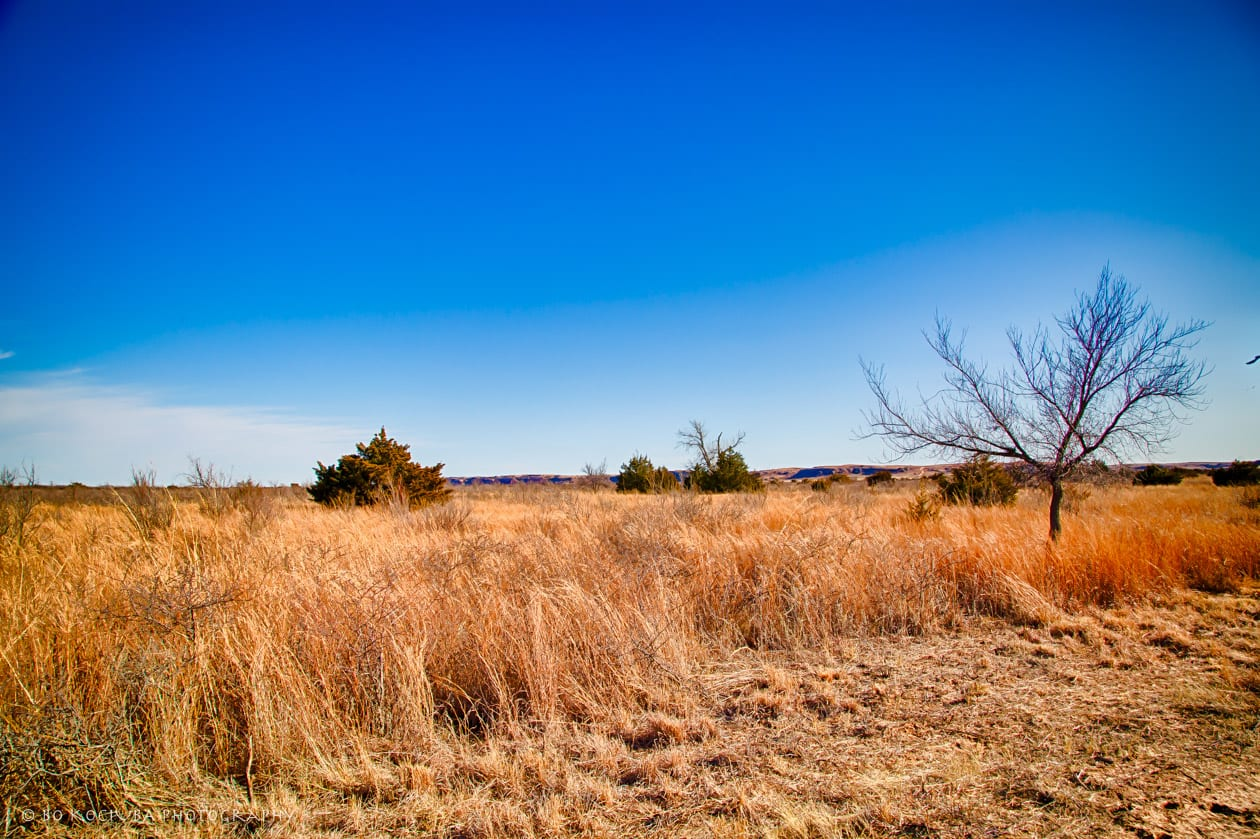 RED BLUFF HUNTING - 429 ACRES BY CIMARRON RIVER