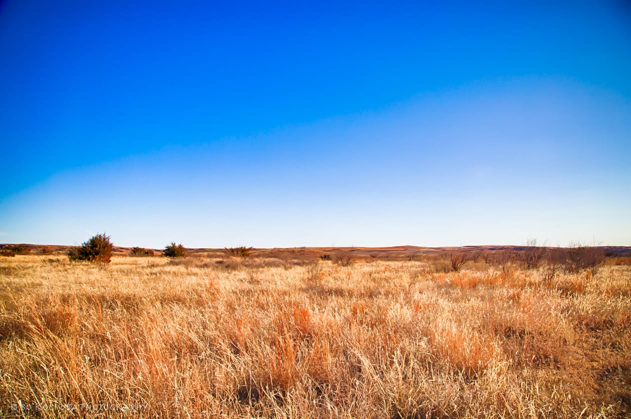 FREEDOM, WOODWARD COUNTY, OK HUNTING LAND FOR SALE - 429 ACRES