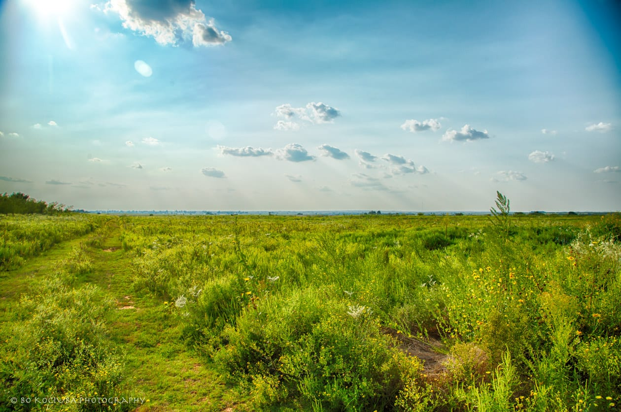 182AC IN CADDO COUNTY - LAND FOR SALE BY WASHITA RIVER