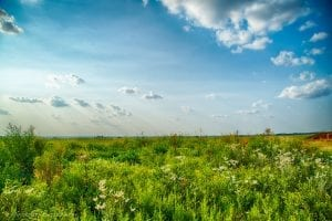 182AC IN CADDO COUNTY – LAND FOR SALE by WASHITA RIVER